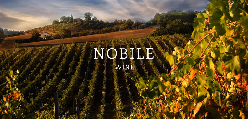 Discover Nobile Wine in Italy - Rolling Hills Francesco Conforti